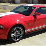 Ronnie & Renee Brown - 2010 Shelby GT500